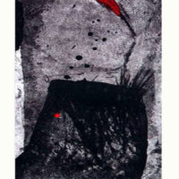 Tregua, Etching, aquatint, sugar lift, dry point, stencil, 40x60cm